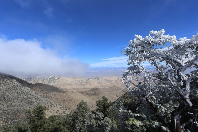 Mount Morris Summit View