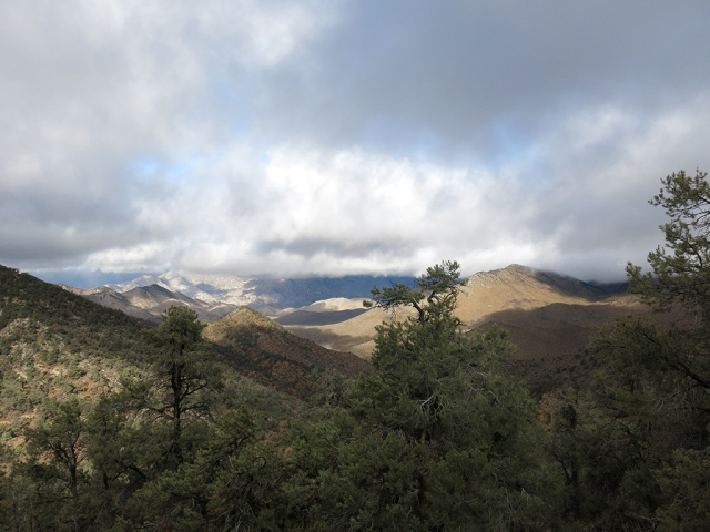 View from the PCT