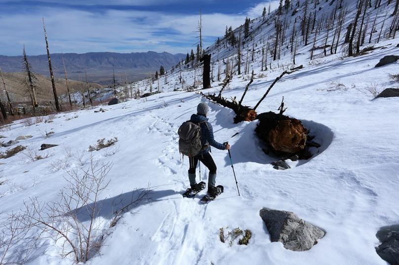 snowshoeing2