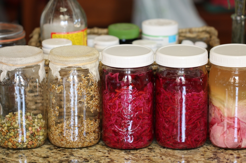 sprouts-and-ferments