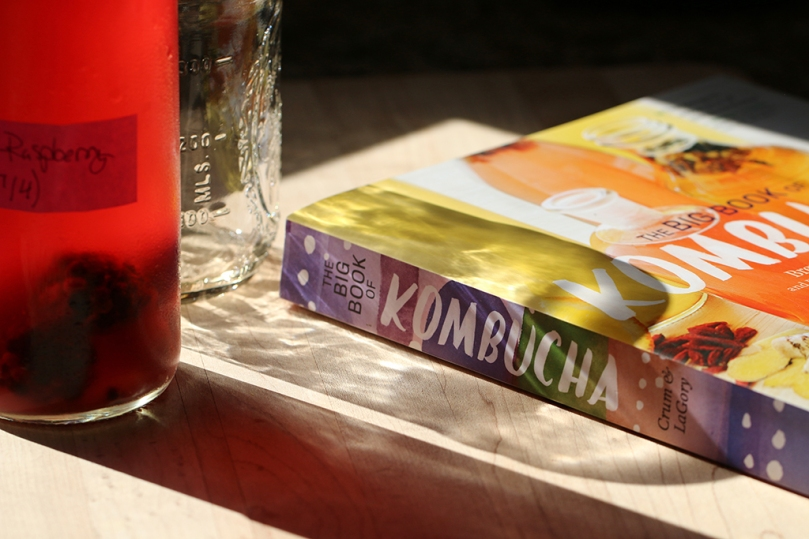 big-book-of-kombucha2